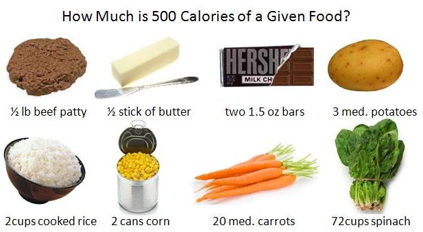 how to find how much calories are in food